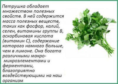 polza-petrushki
