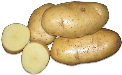 Выращивание картофеля в коробах: особенности процесса
