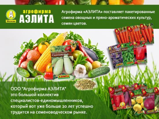 Лучшие производители семян овощей в России, фирмы, которым можно доверять