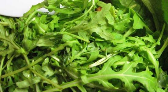 Выращивание рукколы в открытом грунте, условия, посев, рекомендуемые сорта
